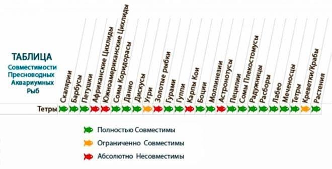 тетра таблица совместимости