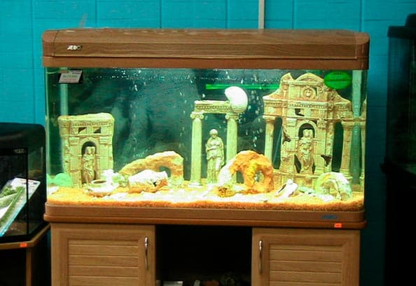 аквариум с тумбой и крышкой