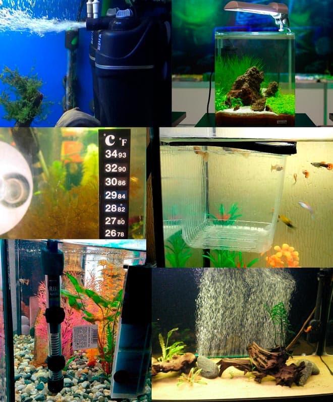оборудование в аквариуме