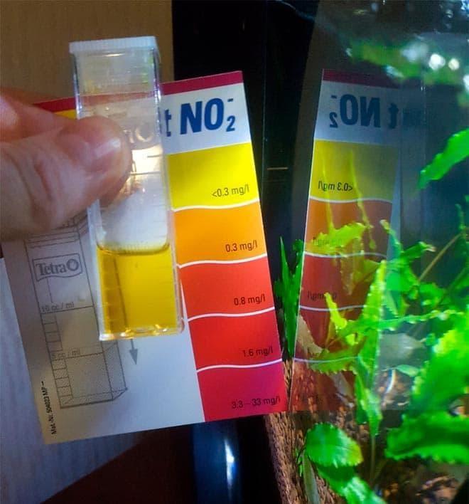тесты для аквариума