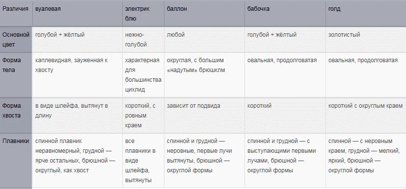 сравнительная таблица видов рамирези
