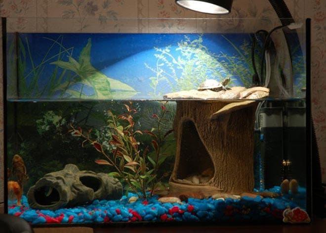 Декорации для акватеррариума