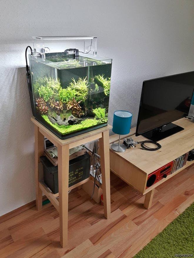 нано аквариумы в интерьере