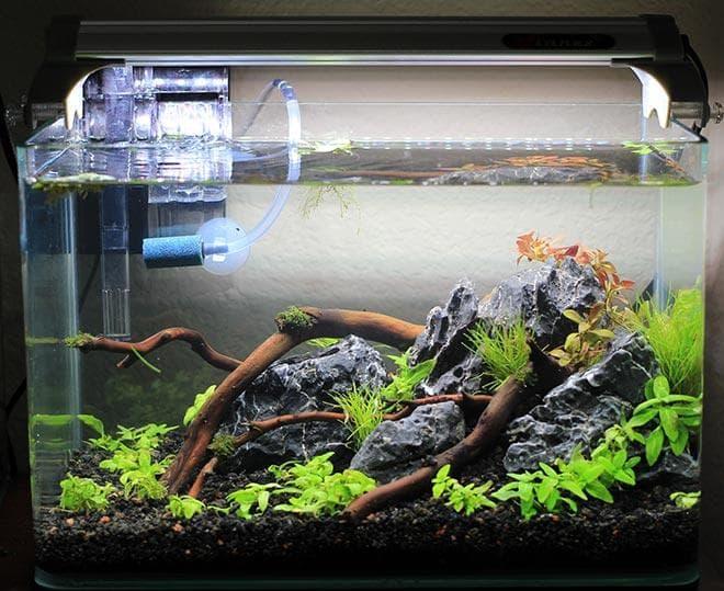 освещение нано аквариума