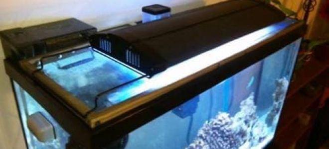 Лучше изготовить крышку для аквариума самостоятельно или найти готовые решения?