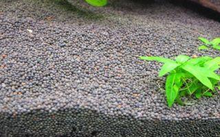Как в аквариуме сделать лучший питательный грунт для растений своими руками?