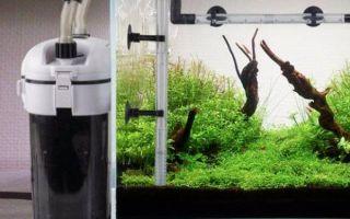 Пошаговая инструкция по созданию внешнего фильтра для аквариума своими руками