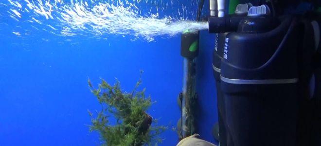 11 лучших фильтров для аквариума