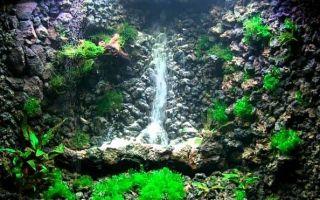 9 элементов для декораций в аквариуме