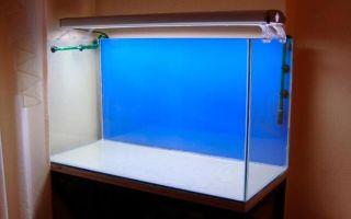 Пошаговая инструкция для изготовления аквариума своими руками из стекла