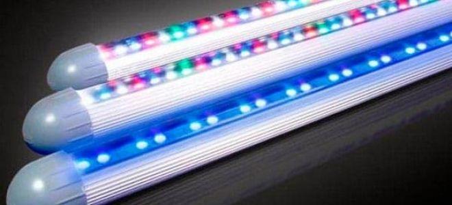 Правильная установка светодиодного освещения для акварима