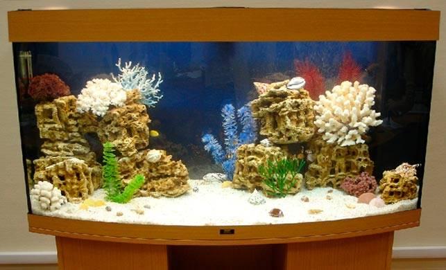 Песчаник в аквариуме