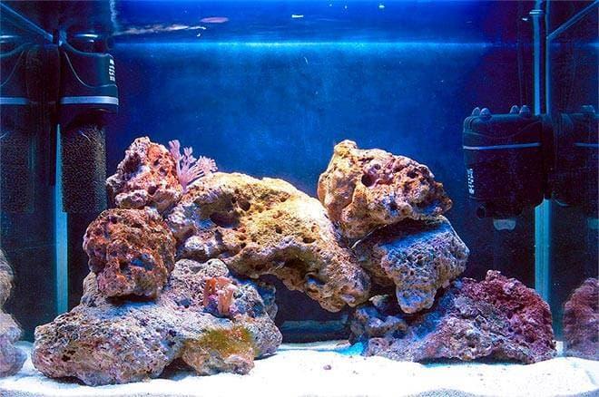 Морские камни в аквариуме