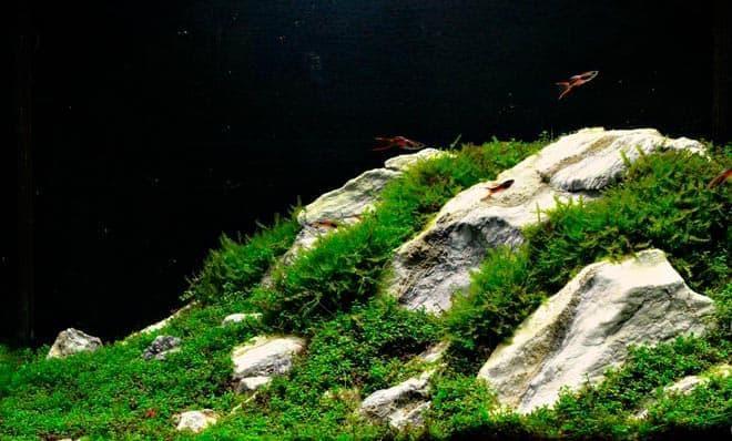 камни