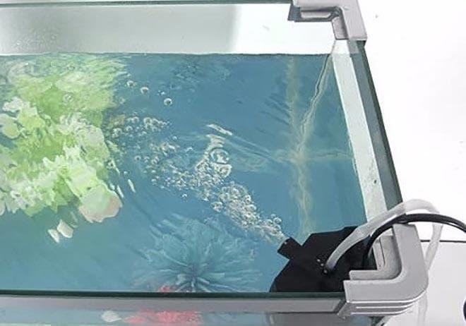 оборудование для аквариума с хирургами