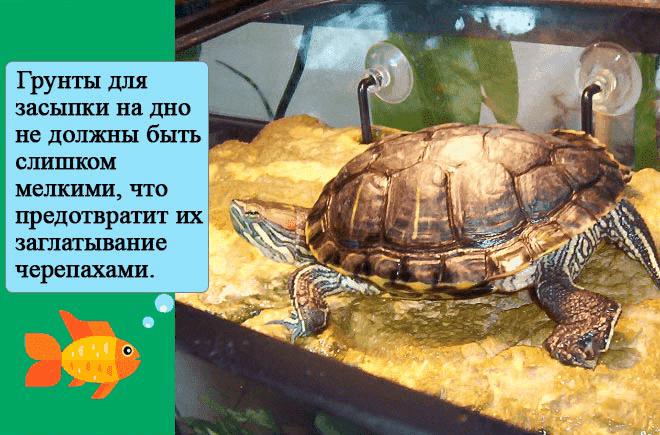 грунт для акватеррариума