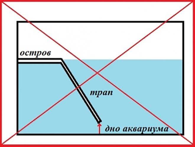 правила обустройства островка для красноухой черепахи