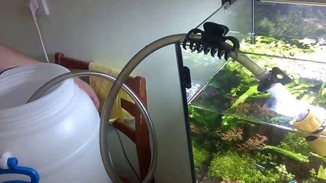 подмена воды и чистка аквариума
